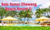 Обзор отеля Sala Samui Chaweng Beach Resort